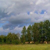 После дождя :: Игорь Сикорский