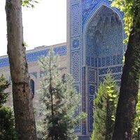 Ташкент :: TATYANA PODYMA