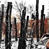 Хай- тек ландшафного дизайна, или Сделаем город уютнее!!))) :: Ирина Сивовол