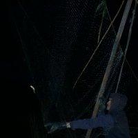 Ночная рыбалка :: Виталий Бережной