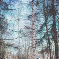 Парк в Апреле :: Павел Крутенко