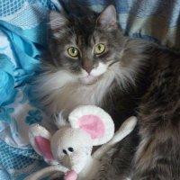 Томас с любимой игрушкой :: Валерия Белошицкая