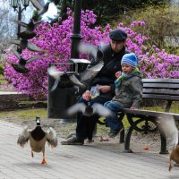 детский мир :: Anrijs Slišāns