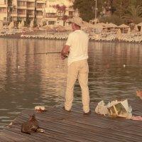 Рыбалка, усы и хвост. :: Katerina Bondar