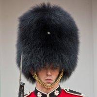 Королевский страж :: Elena Ignatova