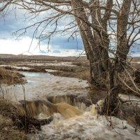 Вешние воды :: Константин Филякин