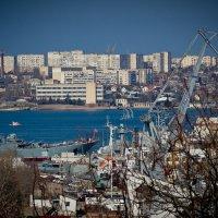 Севастополь, город и порт :: Alexandr Semeniakin