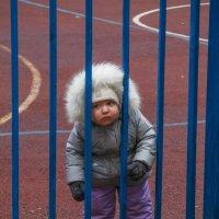 Детки в клетке, или нелюбовь к спорту :: Николай Ефремов