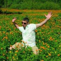 Когда цветут огоньки :: Милешкин Владимир Алексеевич