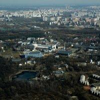 павильон КОСМОС с высоты 337 метров :: Валентина Папилова