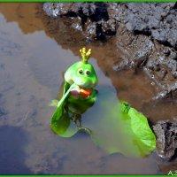 Царевна-лягушка :: Андрей Заломленков