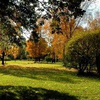 Осенний парк :: Наталья Лунева