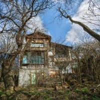 Старый дом... :: Владимир Натальченко
