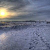Мороз и солнце... :: Евгений Мамаев
