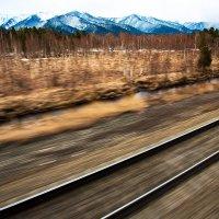 «Россия из окна поезда» :: Алексей Белик