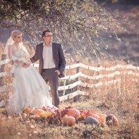 Невеста с приданным :: Евгений Ланин
