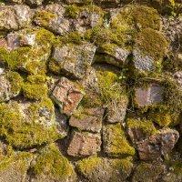 Старые камни парка Jakobsruhe :: Игорь Вишняков