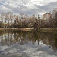 Весна ...У озера 2 :: Viacheslav Birukov