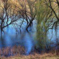 Река стареющим апрелем... :: Лесо-Вед (Баранов)
