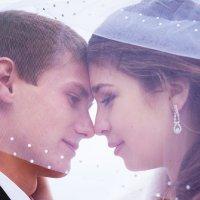 lovers :: Ольга Шевченко