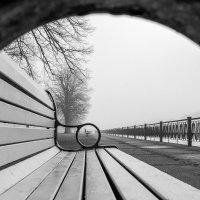 Весенний туман. :: Igor Shoshin