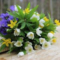 Лесные цветы :: Mariya laimite
