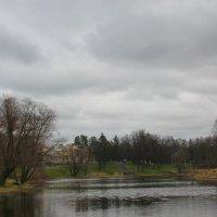 Дождливый апрельский день... :: Tatiana Markova