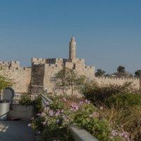 Яффские ворота.Иерусалим :: susanna vasershtein
