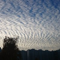 небо... Мобильное фото :: Dashiki