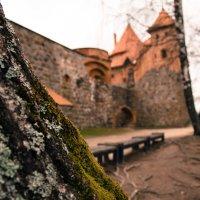 Тракайский замок :: Ирина Жидович