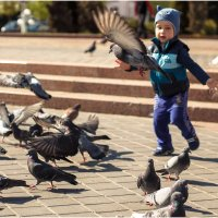 Развлекает голубей )) :: Julia VasilёK