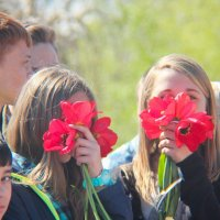 Что бы мы без тюльпанов делали?! :: Николай Сергиенко