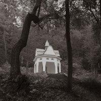 Лісова капличка :: Андрий Майковский