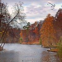 Осенний парк. :: Alex