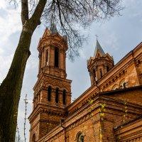 Костел Святой Варвары. Витебск. :: Майя Афзаал