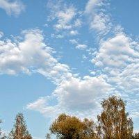 Небо. :: Виталий Липатов