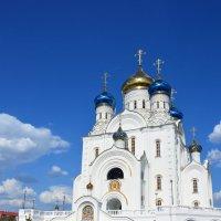 Храм города Лиски :: Наталья Шелыганова