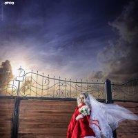 Одиночество не вечно :: Greg Popov
