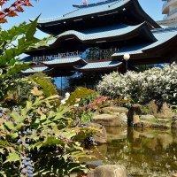 Японский садик в центре Сочи. :: СветЛана D