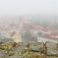 Прага с Вышеграда. Туман. :: Маргарита