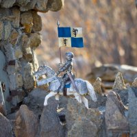 Рыцарь на белом коне :: Nataliya Belova