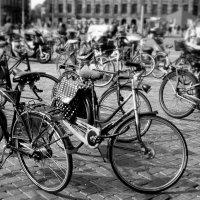 Амстердамский транспорт. :: Тамара Бучарская