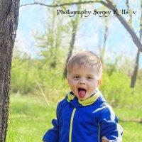 Весенняя прогулка 2 :: Sergey Koltsov