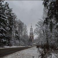 Зимний день... :: Наталья Rosenwasser