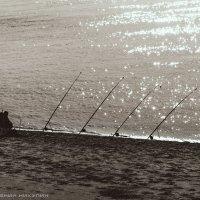 Рыбак :: Евгений Никулин