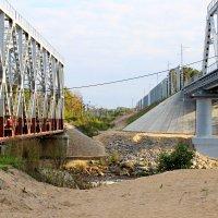 Поколение 2х мостов в Лосево :: Andrey Krushinin
