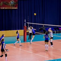 Мяч и сетка :: Евгений Мезенцев