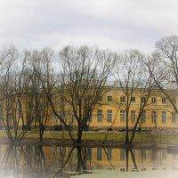Пробуждение Александровского парка... :: Tatiana Markova
