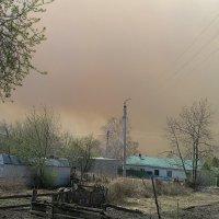 Дым лесного пожара. Окраина. :: Милла Корн