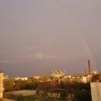 После дождя :: Александр Казанцев